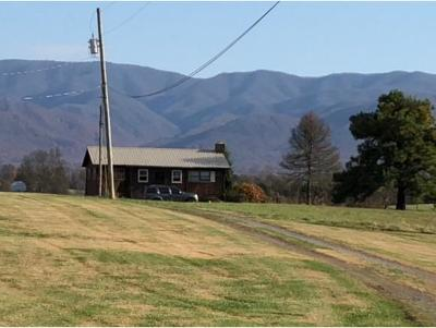 Greeneville Single Family Home For Sale: 174 Ayers