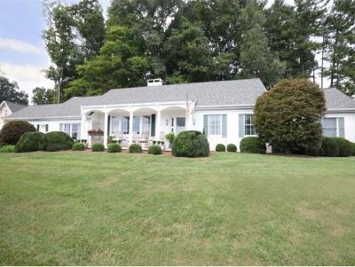 Damascus, Bristol, Bristol Va City Single Family Home For Sale: 405 W. Valley Drive