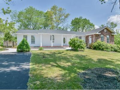 Kingsport Single Family Home For Sale: 504 New Beason Well Road