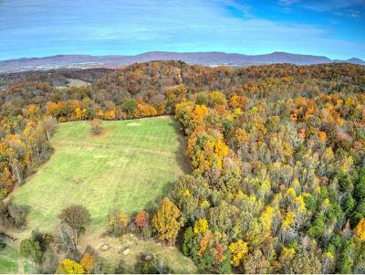 Greene County Residential Lots & Land For Sale: 1482 Brittontown Road