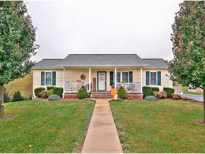 Greeneville Single Family Home For Sale: 140 Carriage Ln