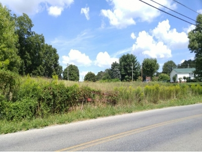 Washington-Tn County Residential Lots & Land For Sale: TBD Old Embreeville Rd