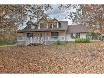 Greeneville Single Family Home For Sale: 700 McKee Way
