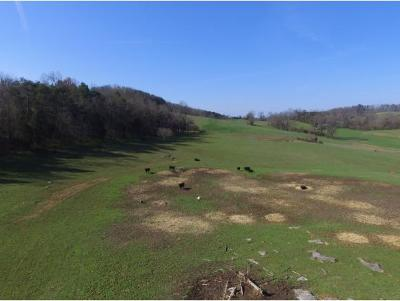 Hamblen County Residential Lots & Land For Sale: 1803 Needmore Rd