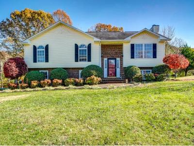 Jonesborough Single Family Home For Sale: 109 Mitchell Creek