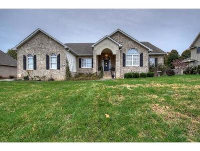 Johnson City TN Single Family Home For Sale: $264,900
