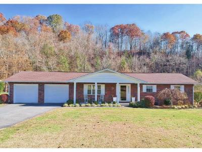 Elizabethton Single Family Home For Sale: 1658 State Highway 91