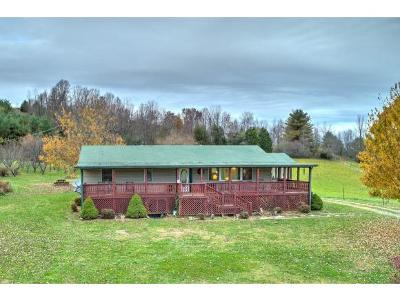 Abingdon Single Family Home For Sale: 27385 Denton Valley Road