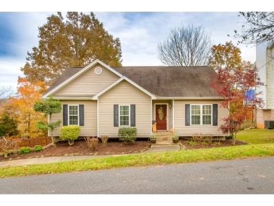 Kingsport Single Family Home For Sale: 729 Beechwood Dr.