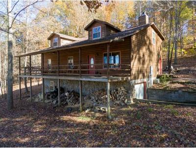 Greene County, Washington-Tn County Single Family Home For Sale: 664 Hartmantown Rd