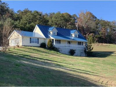 Greeneville Single Family Home For Sale: 1040 Shakerag Road