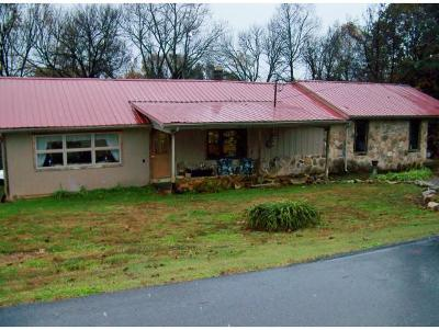 Kingsport Single Family Home For Sale: 565 Baines Ave.