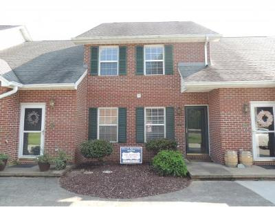 Blountville Condo/Townhouse For Sale: 127 Eagle View Private Drive #127