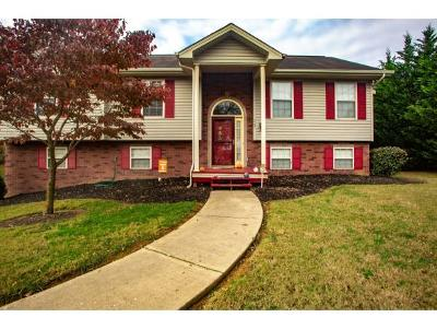Jonesborough Single Family Home For Sale: 17 Teague Ct