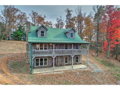 Greene County, Washington-Tn County Single Family Home For Sale: 240 Joe Pye Ln