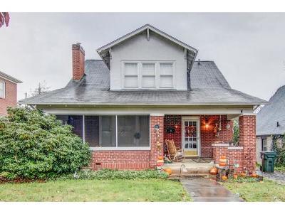 Bristol VA Single Family Home For Sale: $188,500