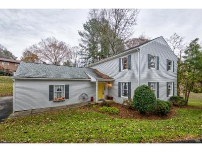 Bristol Single Family Home For Sale: 224 Forest Hills Drive