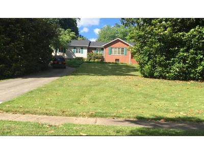 Kingsport TN Single Family Home For Sale: $269,900