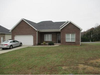 Kingsport Single Family Home For Sale: 4030 Sail Makers Whip Court