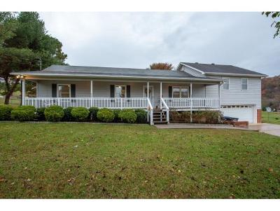 Kingsport TN Single Family Home For Sale: $214,900