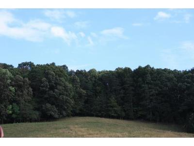 Greene County Residential Lots & Land For Sale: 15720 Kingsport Hwy