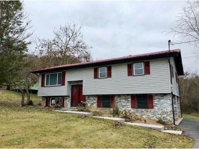 Bluff City Single Family Home For Sale: 230 Pine Laurel Circle