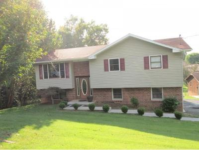 Bluff City Single Family Home For Sale: 218 Whispering Woods Dr