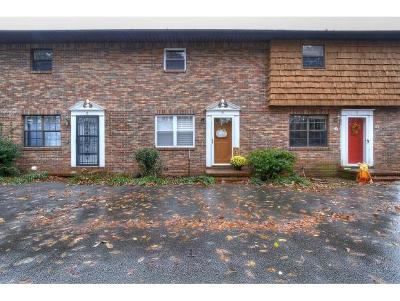 Elizabethton Single Family Home For Sale: 135 Towneview Estates #4