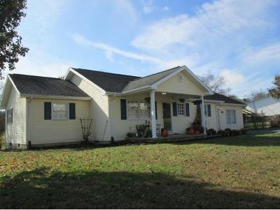 Johnson City Single Family Home For Sale: 3201 McKinley Rd