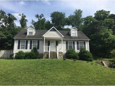 Greeneville Single Family Home For Sale: 1719 Cindy Drive