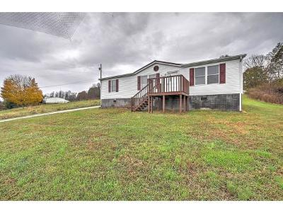 Jonesborough Single Family Home For Sale: 245 Sugar Hollow Rd.