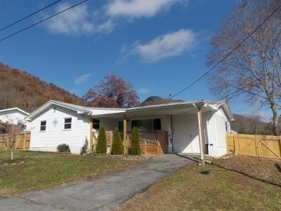 Weber City TN Single Family Home For Sale: $85,000