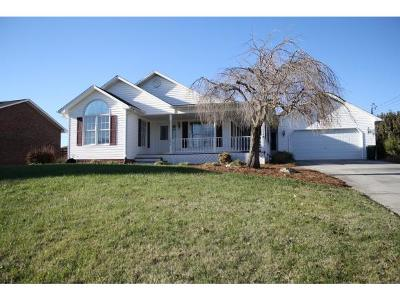 Church Hill Single Family Home For Sale: 223 Chickasaw Circle