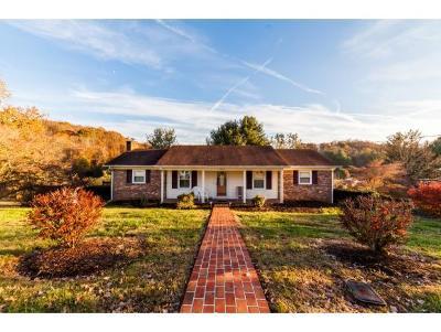 Kingsport Single Family Home For Sale: 5825 Seneca