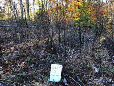 Residential Lots & Land For Sale: Branch Way