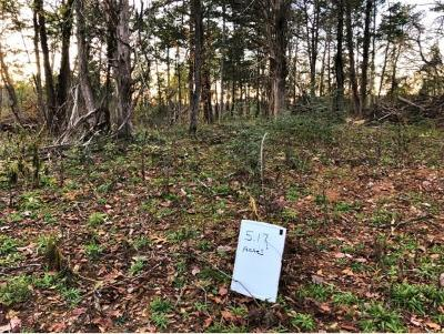 Residential Lots & Land For Sale: Hwy 25/70