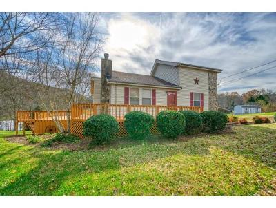Kingsport Single Family Home For Sale: 120 Summerview Ct