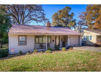 Kingsport Single Family Home For Sale: 1255 Catawba Street