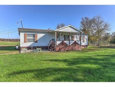 Bulls Gap Single Family Home For Sale: 14980 W Andrew Johnson Hwy