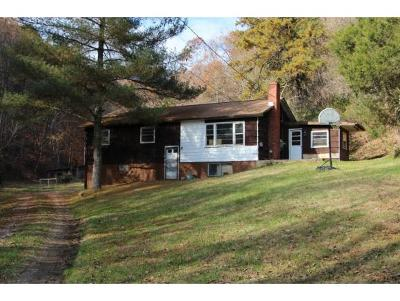 Blountville Single Family Home For Sale: 276 Buncombe Road
