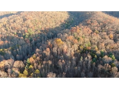 Residential Lots & Land For Sale: 236 Sheets Hollow Rd.
