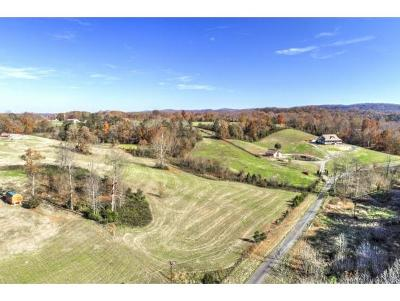 Residential Lots & Land For Sale: 169 Williams Lane