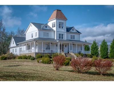 Blountville Single Family Home For Sale: 590 Fieldcrest Rd