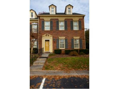 Johnson City Condo/Townhouse For Sale: 603 E Mountcastle Dr #4