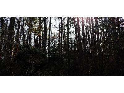 Residential Lots & Land For Sale: TBD Hidden Valley Road