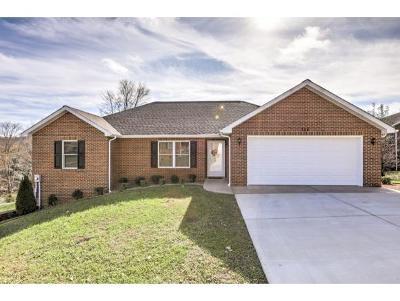 Greeneville Condo/Townhouse For Sale: 204 Farmington Dr