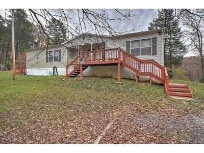 Single Family Home For Sale: 123 J D King Rd.