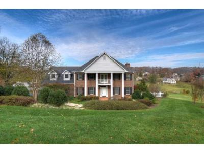 Jonesborough TN Single Family Home For Sale: $798,900
