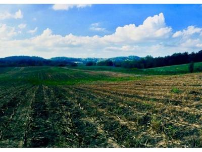 Residential Lots & Land For Sale: TBD Ward Rd