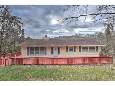 Kingsport Single Family Home For Sale: 104 Holiday Hills
